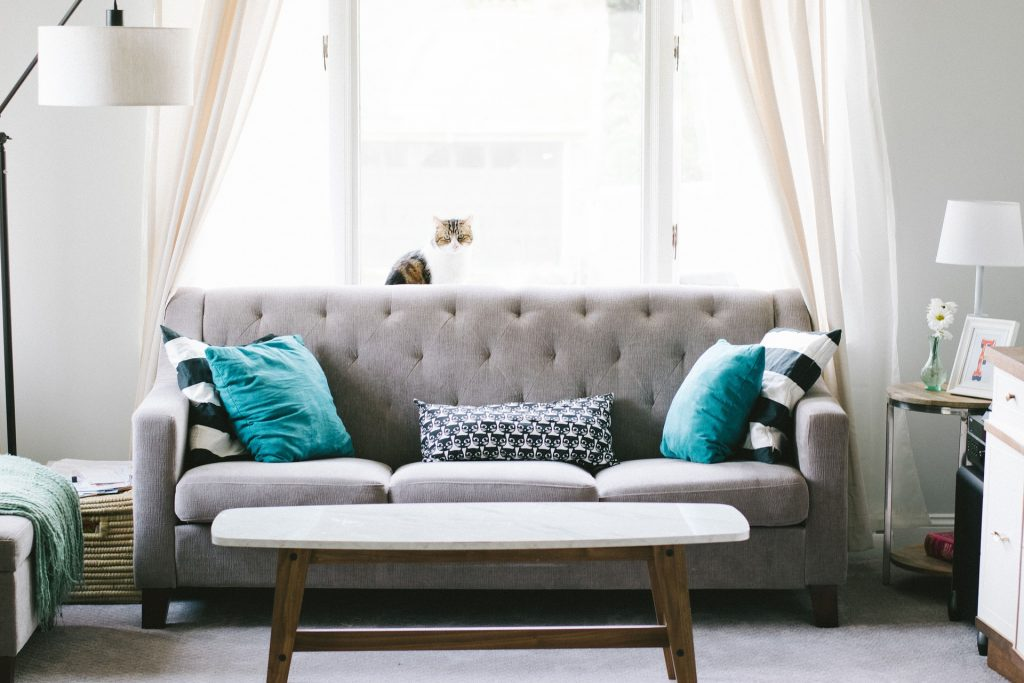 Living room decor grey sofa blue cushions